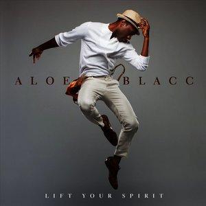 Image result for aloe blacc album cover