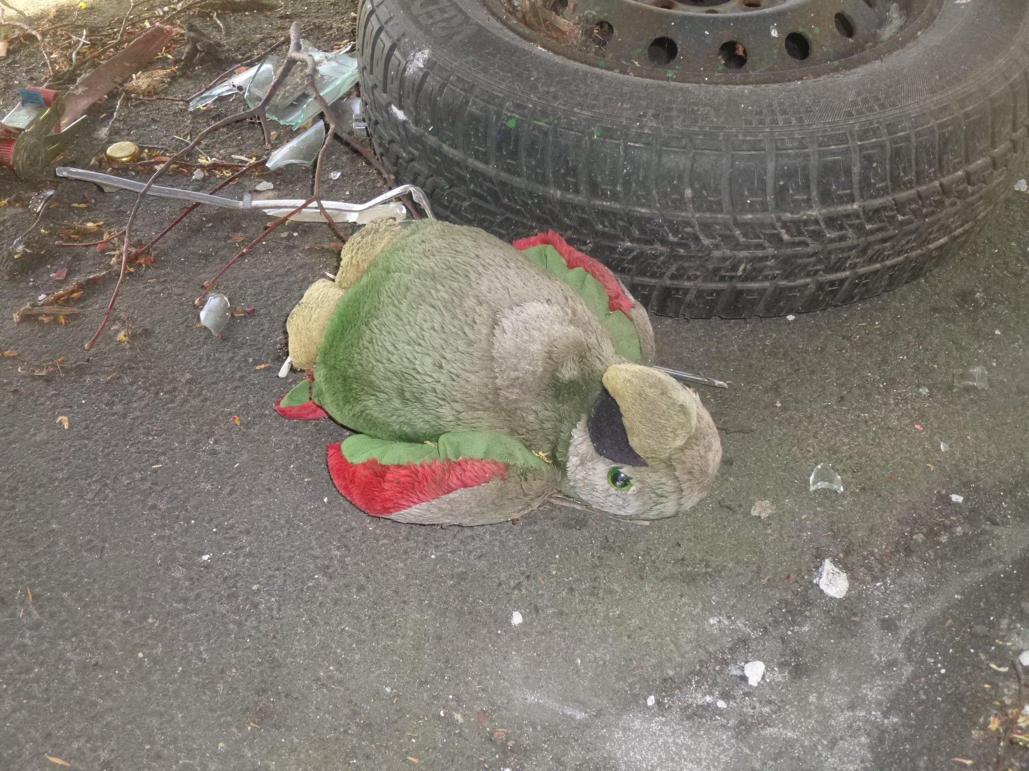 Papagei unter dem Wagen