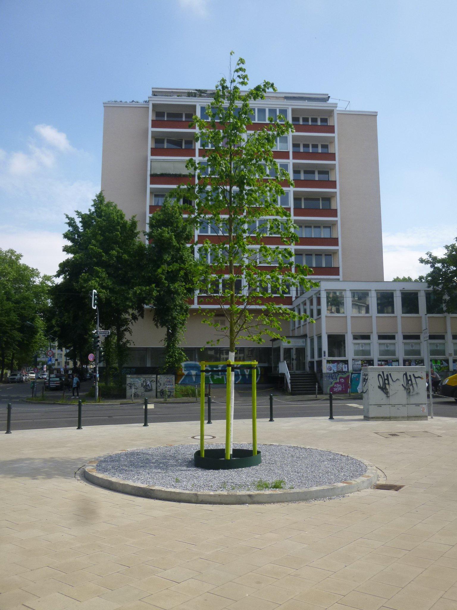 Baum Linden-/Ackerstr.